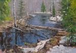 River in the forest, thaw. Volya Alexander