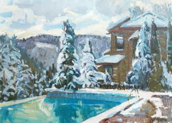 Zhukova Juliya. Snow covered pool