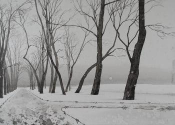 Eldeukov Oleg. Belated snow fell