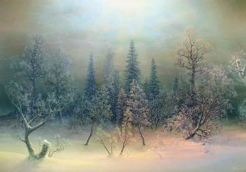 Christmas forest. Panin Sergey