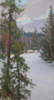 Winter evening. Forest lake. Etude