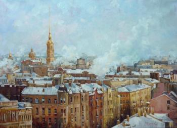 Trunov Dmitriy. Roofs of St. Petersburg