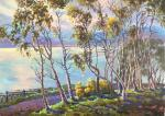 Stepanov Pavel. Warm evening over the Avacha Bay