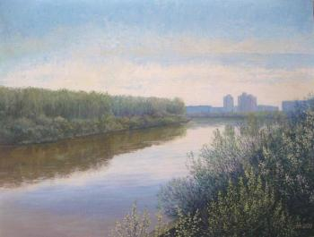 Willow blooms (River View). Maryin Alexey