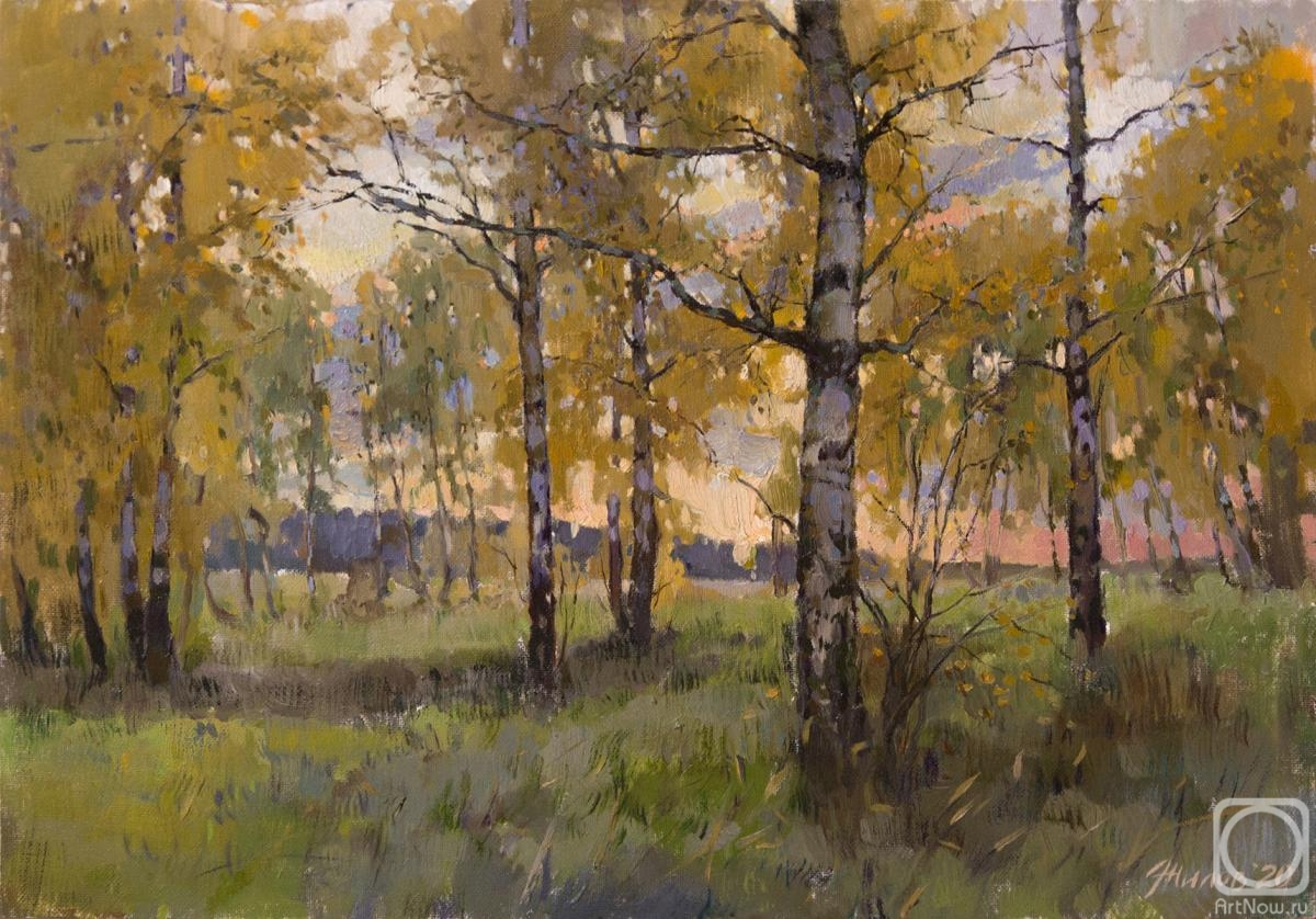Zhilov Andrey. October evening