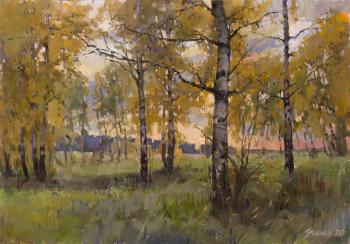 October evening. Zhilov Andrey