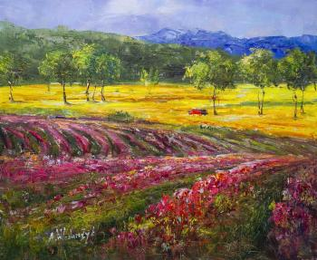 Flowering fields of Provence. Vlodarchik Andjei