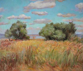 Vyrvich Valentin. Clouds over the steppe