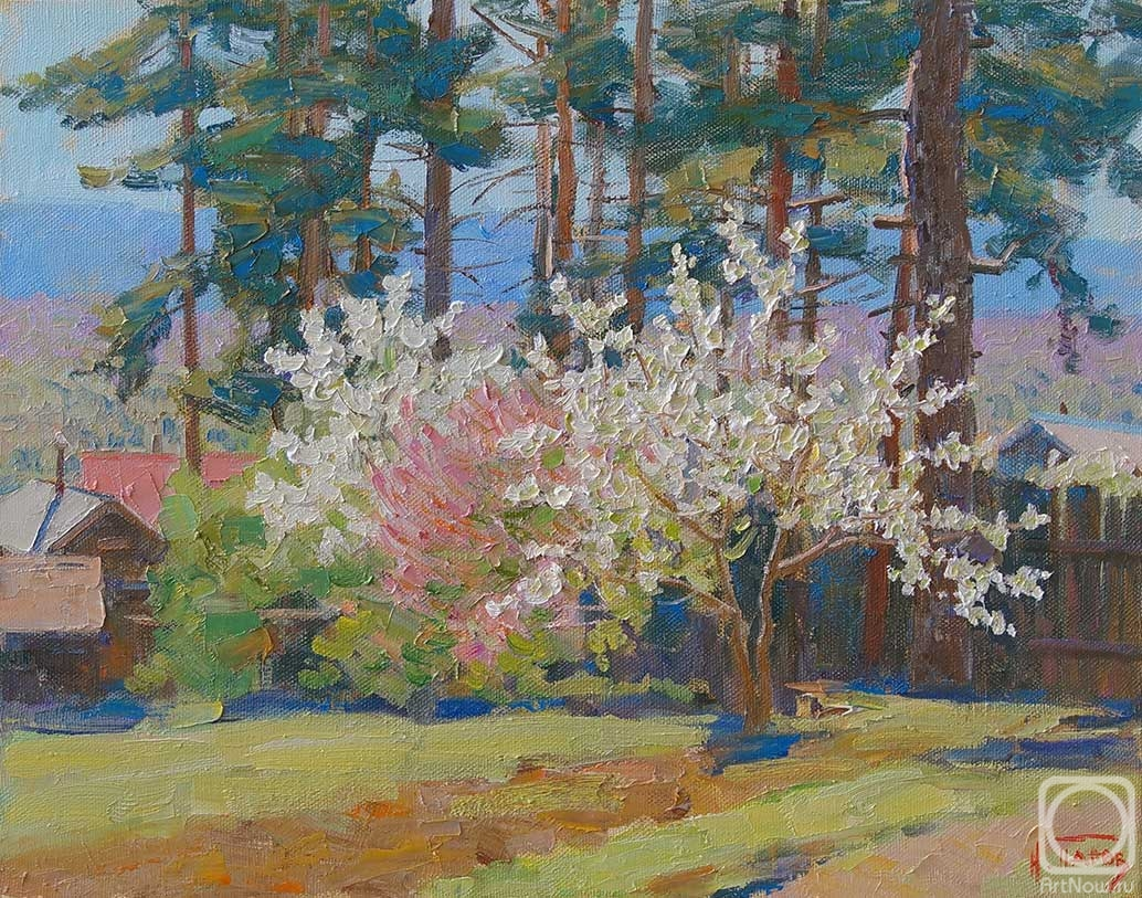 Panov Igor. Under the spring pines
