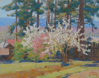 Under the spring pines