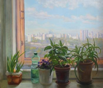 From the window of a quarantined (Window Sill). Shumakova Elena