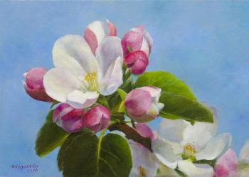 Apple blossoms. Kazakova Tatyana