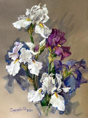 Irises on gray