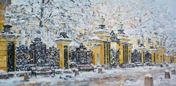 The iron fencing of the Demidovs ' estate. Eskov Pavel