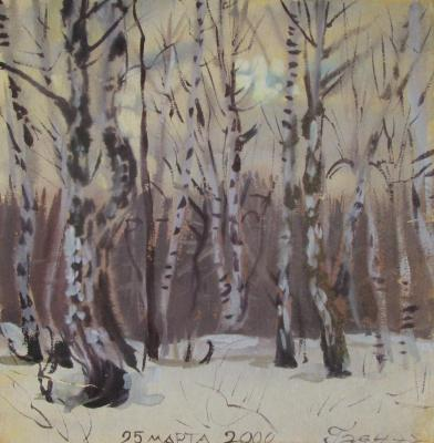 Sunset, spring, forest, March 25, 2000. Dobrovolskaya Gayane