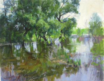 Flood. Voronov Vladimir