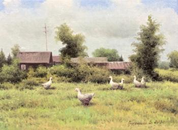 Rural landscape with geese
