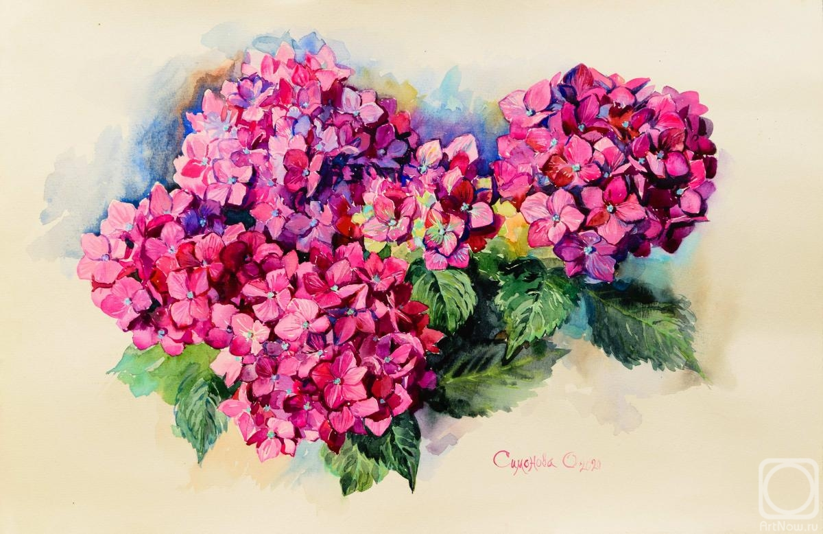 Simonova Olga. Red Hydrangea Painting, Original Watercolor, Study from Nature, Gift to Woman, Decor for Interior,Mothers Day gift,Botanical Wall Art