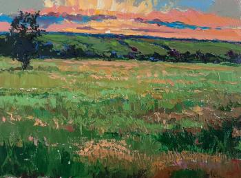 Aroma of meadow grass. Golovchenko Alexey