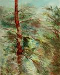 Volosov Vladmir. The old alone tree