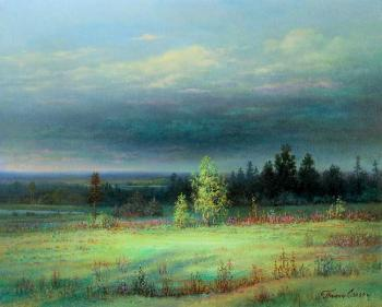 After the rain. May (The Russian Landscape). Panin Sergey
