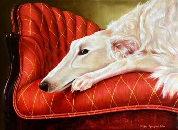 Portrait of Greyhound. Bukuros Ekaterina