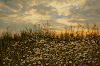Evening daisies. Panov Eduard