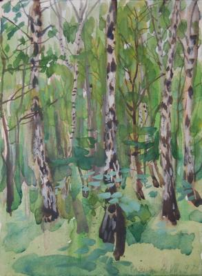 Birch forest (Greenery). Dobrovolskaya Gayane