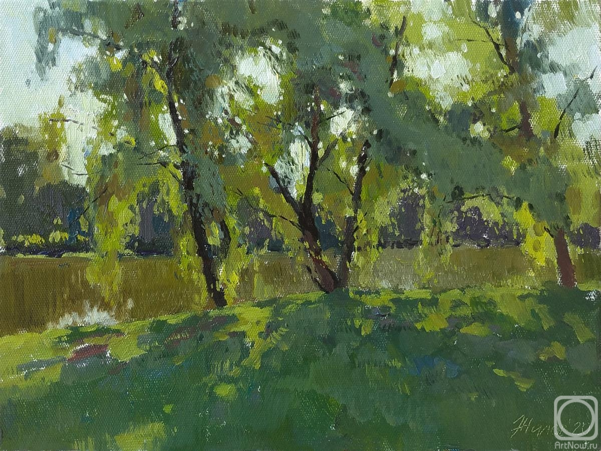 Zhilov Andrey. Willows by the pond
