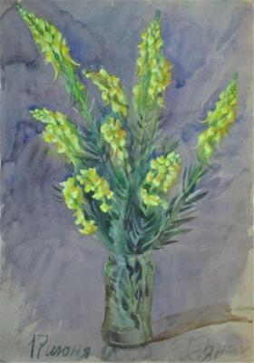 Toadflax bunch (Graphics). Dobrovolskaya Gayane