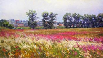 Flowering meadow in Bogolyubovo