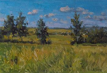 Life sketch with a field. Volya Alexander