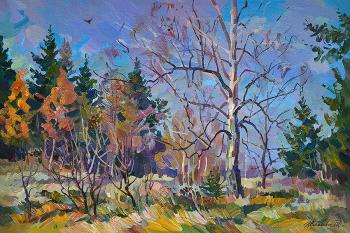 In the field of birch. Zhlabovich Anatoly