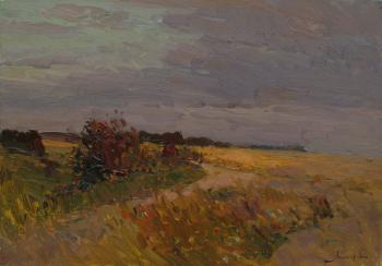 August, evening, fields. Makarov Vitaly