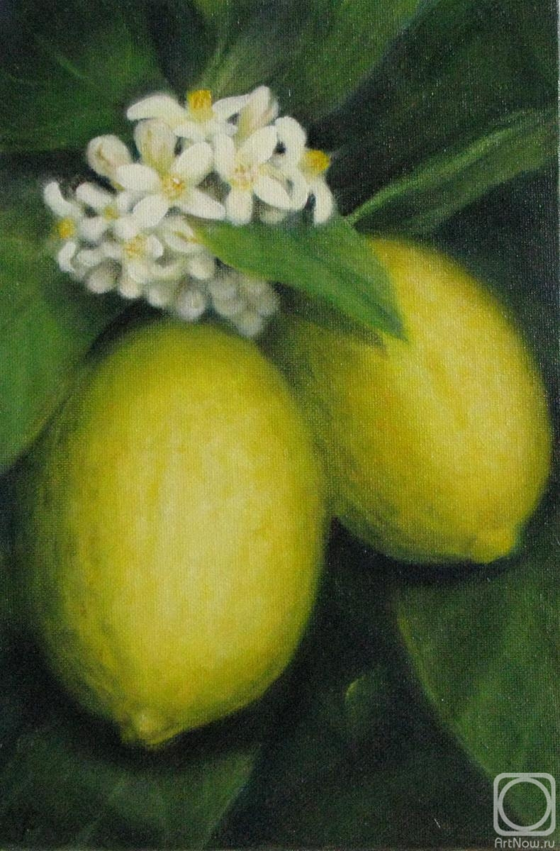 Fomina Lyudmila. Lemons on a branch