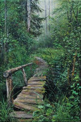 Bridge in the spruce forest. Vokhmin Ivan