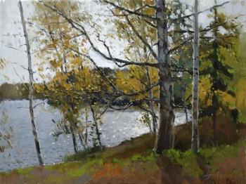 Study with an old birch. Zhilov Andrey