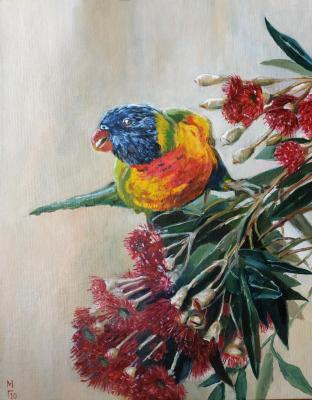 Parrot Rainbow Lorikeet. Grinkevich Mary