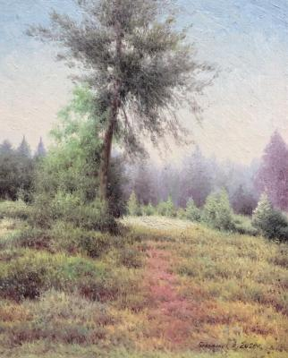 July haze (Pine Tree). Gribennikov Vasily