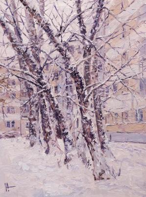 Snow covered trees in the city. Volya Alexander