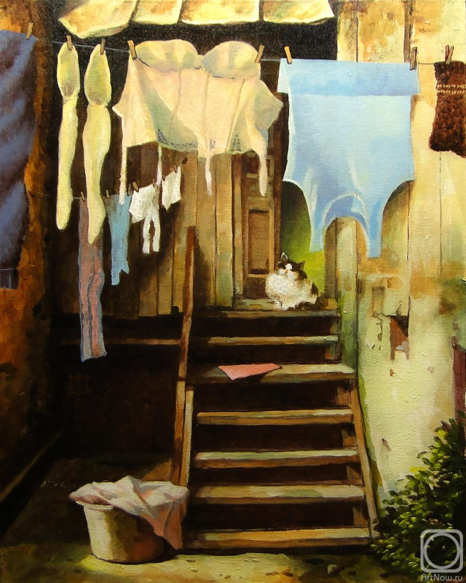 Andrianov Andrey. The laundress does the laundry all day