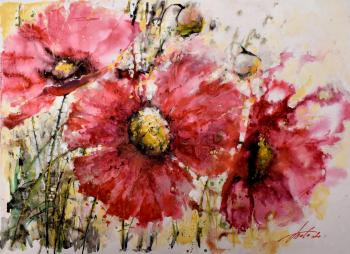 Poppies. Tata Tatiana