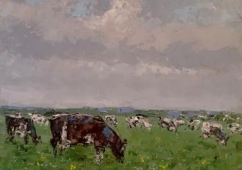Autumn study with a collective farm herd