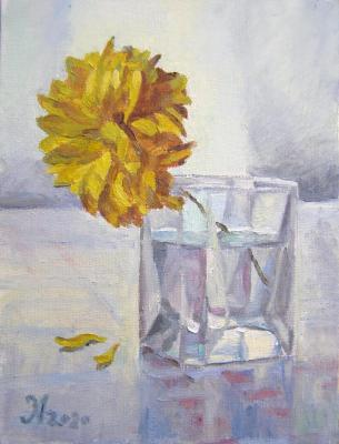 Flower in a glass