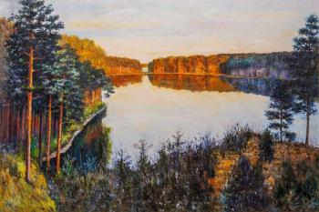A copy of the oil painting. Forest Lake. Kamskij Savelij