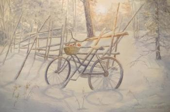 Snow-covered bike