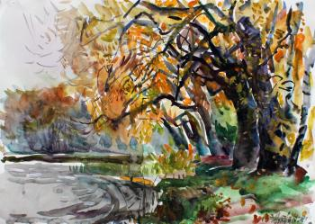 Willows the pond. Zhukova Juliya
