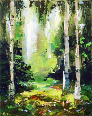 Birches in the forest