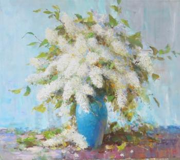 Bird cherry. Komarov Nickolay