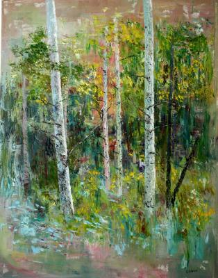 Birches in the forest. Volosov Vladmir